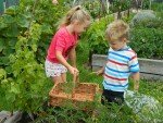 10 Tips to get Kids Gardening