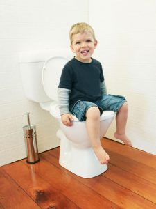 lupi-lu-toilet-training-seat-review