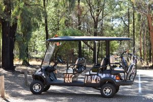 visiting-Dubbo-zoo-electric-cart